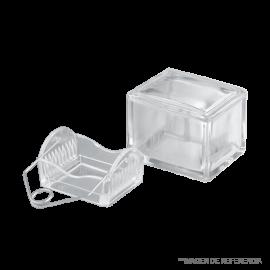 Cubeta de tincion. c/tapa y soporte de vidrio c/gancho metalico